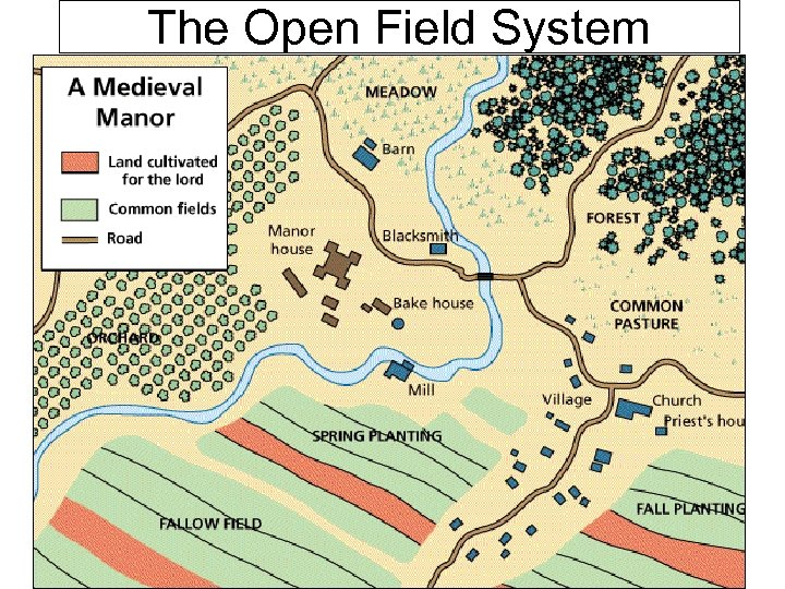 The Open Field System