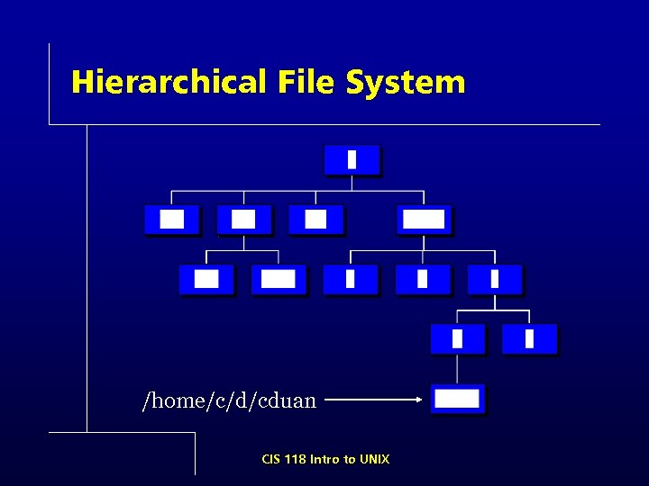 Hierarchical File System /home/c/d/cduan CIS 118 Intro to UNIX