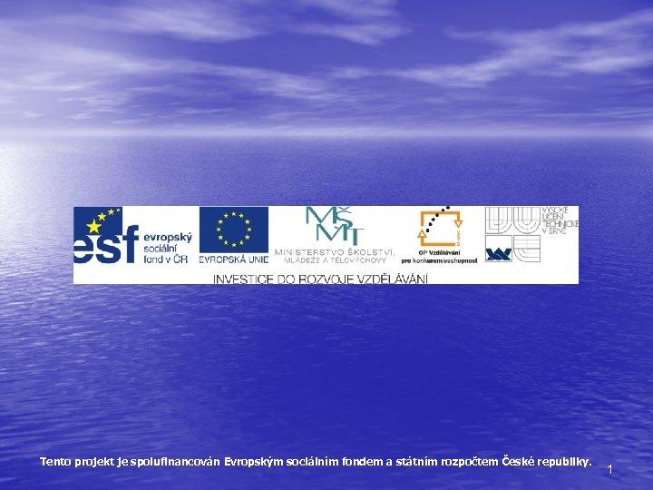 Tento projekt je spolufinancován Evropským sociálním fondem a státním rozpočtem České republiky. 1