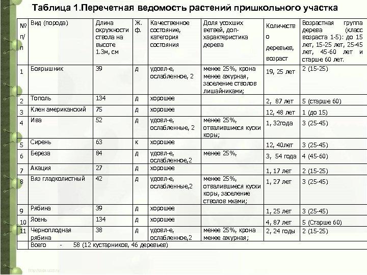 Таблица 1. Перечетная ведомость растений пришкольного участка № Вид (порода) п/ п Длина окружности