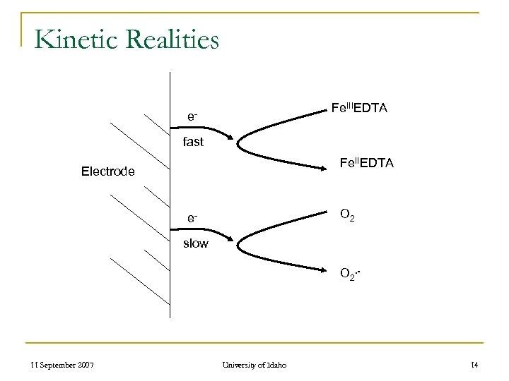 Kinetic Realities Fe. IIIEDTA efast Fe. IIEDTA Electrode O 2 eslow O 2. -