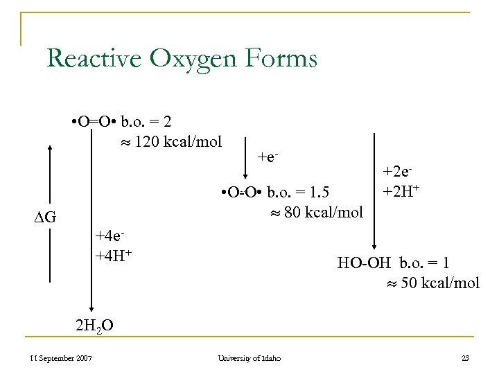 Reactive Oxygen Forms • O=O • b. o. = 2 120 kcal/mol +e- •