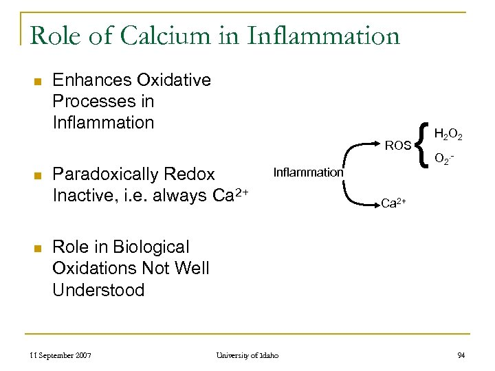 Role of Calcium in Inflammation n Enhances Oxidative Processes in Inflammation ROS n n