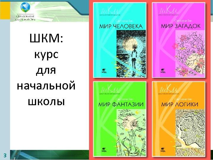Лаборатория Анатолия Гина ШКМ: курс для начальной школы 3