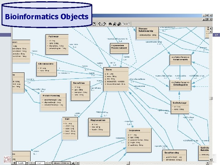Bioinformatics Objects 17
