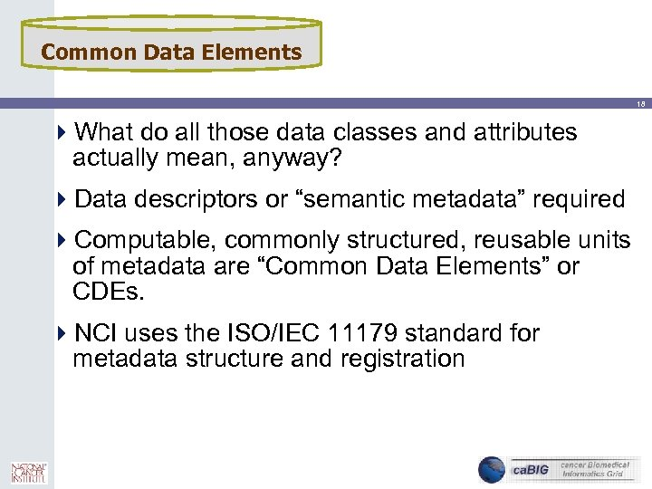 Common Data Elements 18 4 What do all those data classes and attributes actually