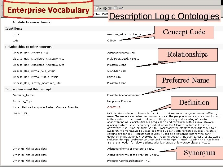 Enterprise Vocabulary Description Logic Ontologies Concept Code Relationships Preferred Name Definition Synonyms 22