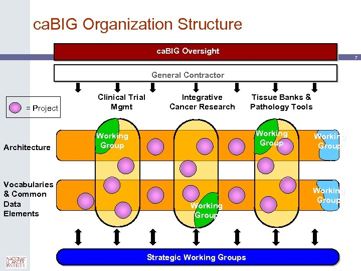 ca. BIG Organization Structure ca. BIG Oversight 7 General Contractor = Project Architecture Vocabularies