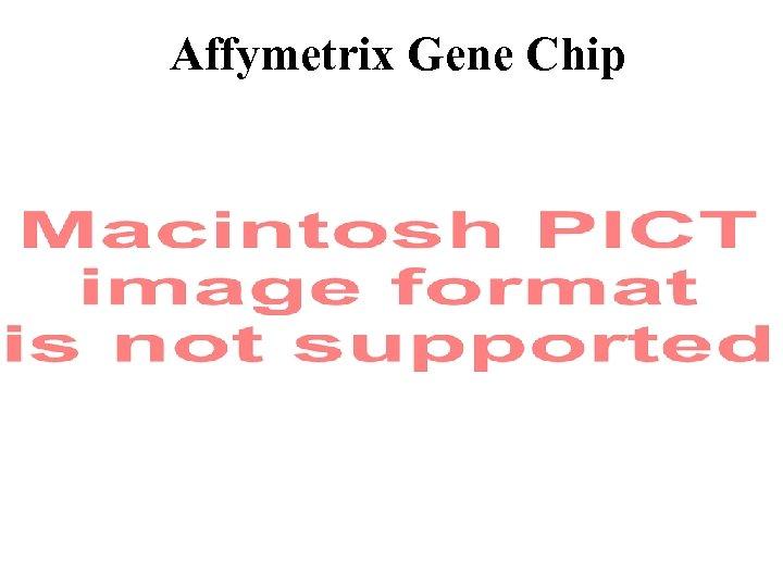 Affymetrix Gene Chip