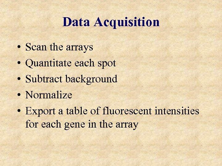 Data Acquisition • • • Scan the arrays Quantitate each spot Subtract background Normalize