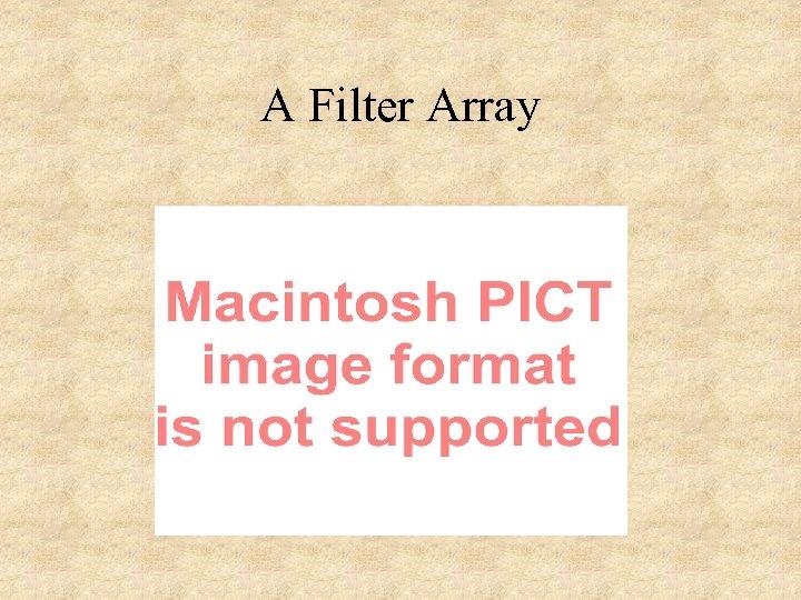 A Filter Array