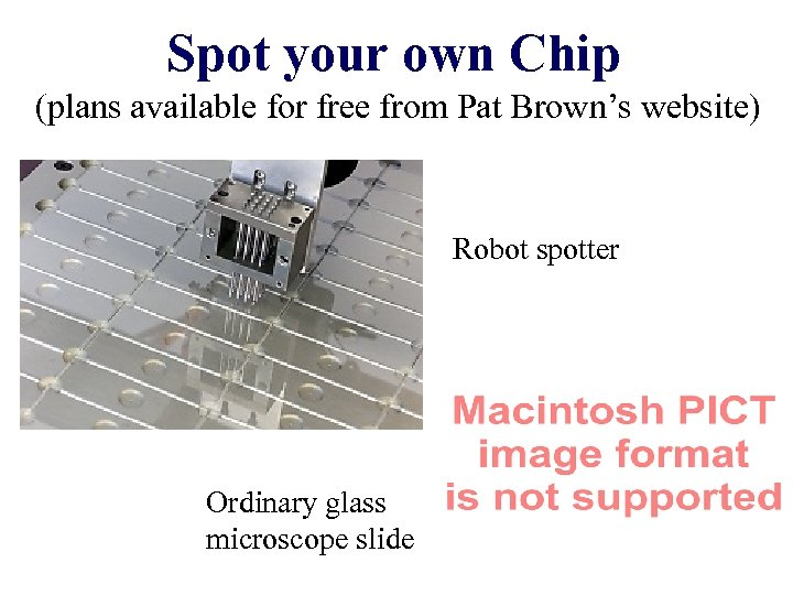 Spot your own Chip (plans available for free from Pat Brown's website) Robot spotter