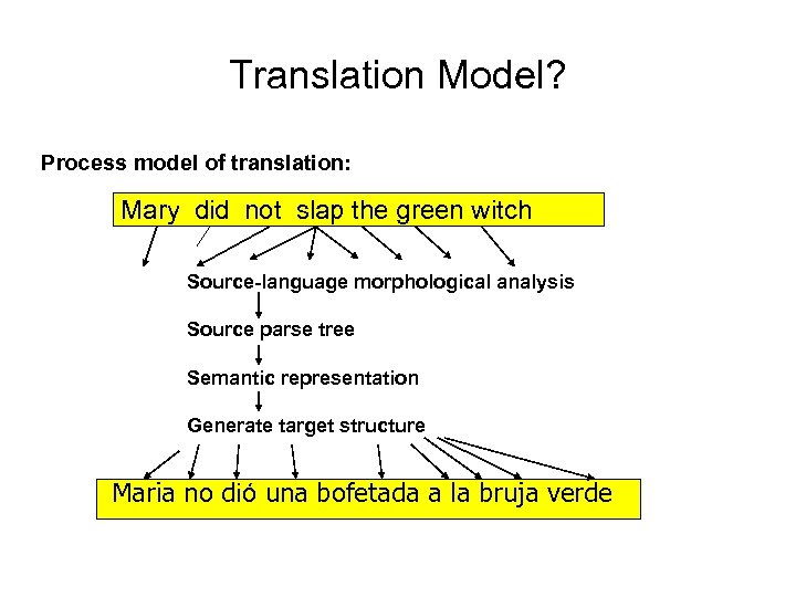 Translation Model? Process model of translation: Mary did not slap the green witch Source-language