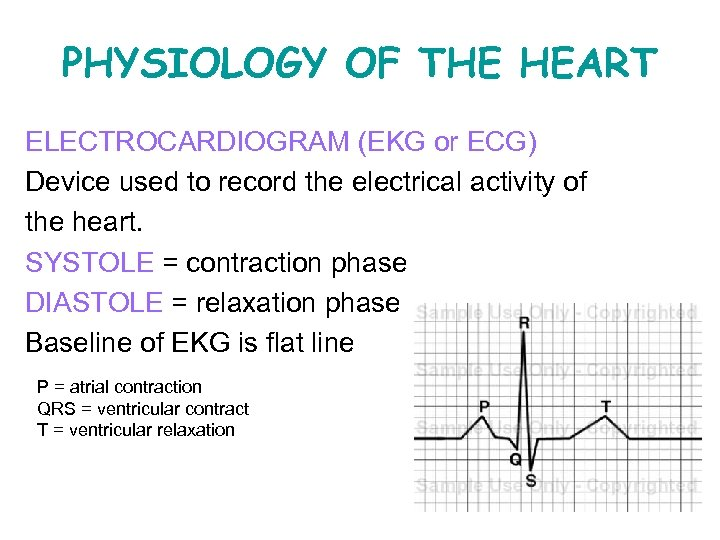 PHYSIOLOGY OF THE HEART ELECTROCARDIOGRAM (EKG or ECG) Device used to record the electrical