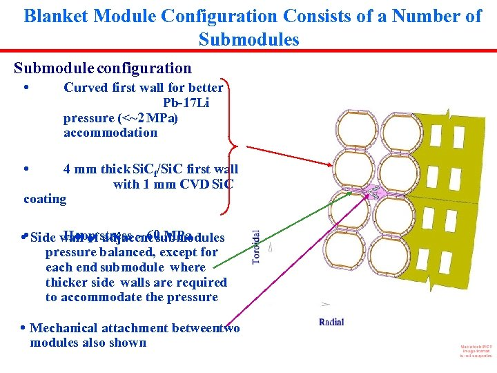 Blanket Module Configuration Consists of a Number of Submodules Submodule configuration • Curved first