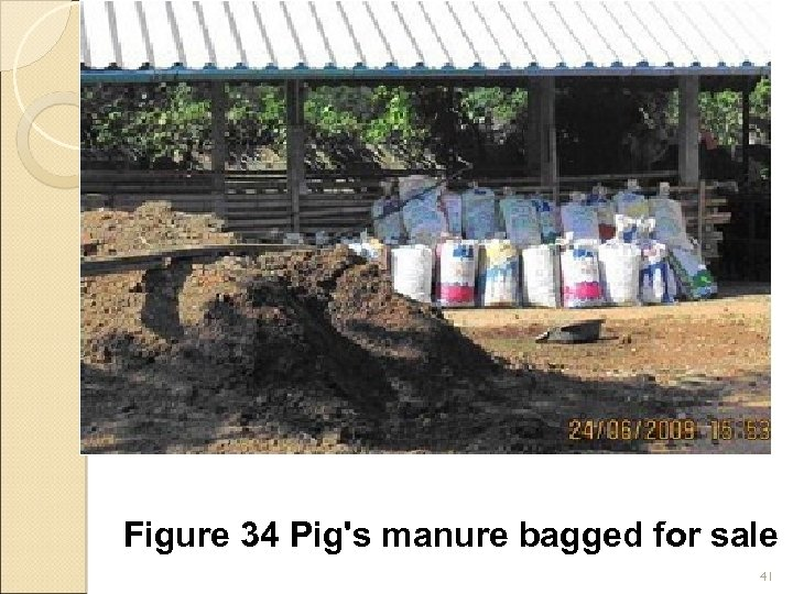 Figure 34 Pig's manure bagged for sale 41