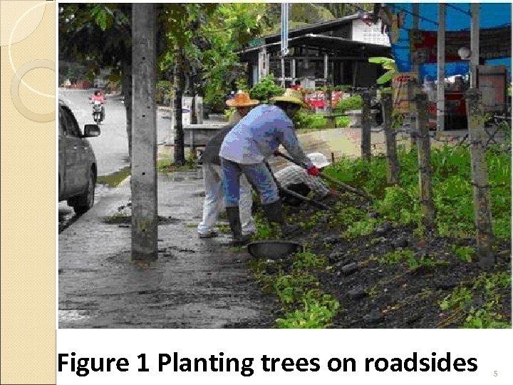 Figure 1 Planting trees on roadsides 5