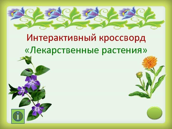 Интерактивный кроссворд «Лекарственные растения»