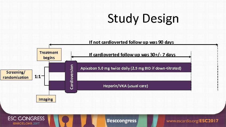 Study Design If not cardioverted follow up was 90 days Treatment begins 1: 1