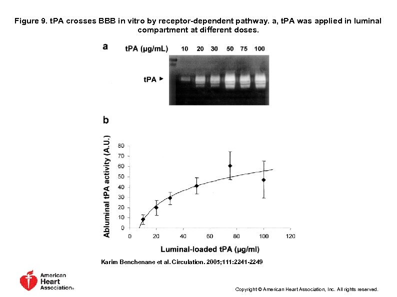 Figure 9. t. PA crosses BBB in vitro by receptor-dependent pathway. a, t. PA