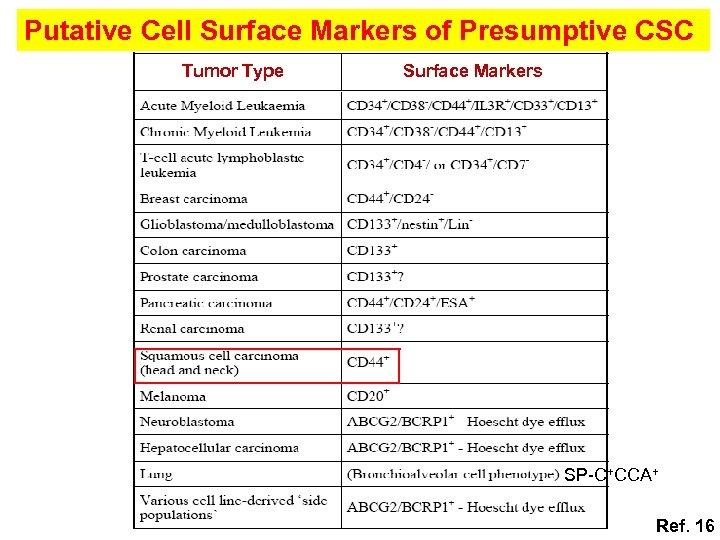 Putative Cell Surface Markers of Presumptive CSC Tumor Type Surface Markers SP-C+CCA+ Ref. 16