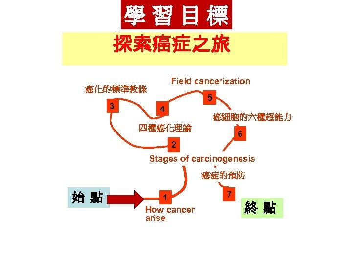 學習目標 探索癌症之旅 Field cancerization 癌化的標準教條 3 5 4 癌細胞的六種超能力 四種癌化理論 6 2 Stages of
