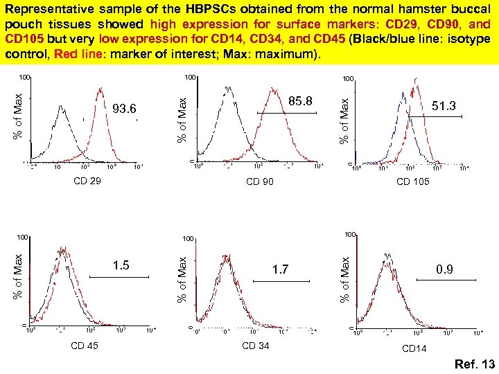 Representative sample of the HBPSCs obtained from the normal hamster buccal pouch tissues showed