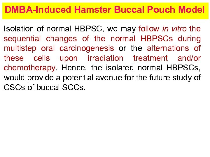 DMBA-Induced Hamster Buccal Pouch Model Isolation of normal HBPSC, we may follow in vitro