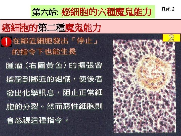 第六站: 癌細胞的六種魔鬼能力 癌細胞的第二種魔鬼能力 Ref. 2