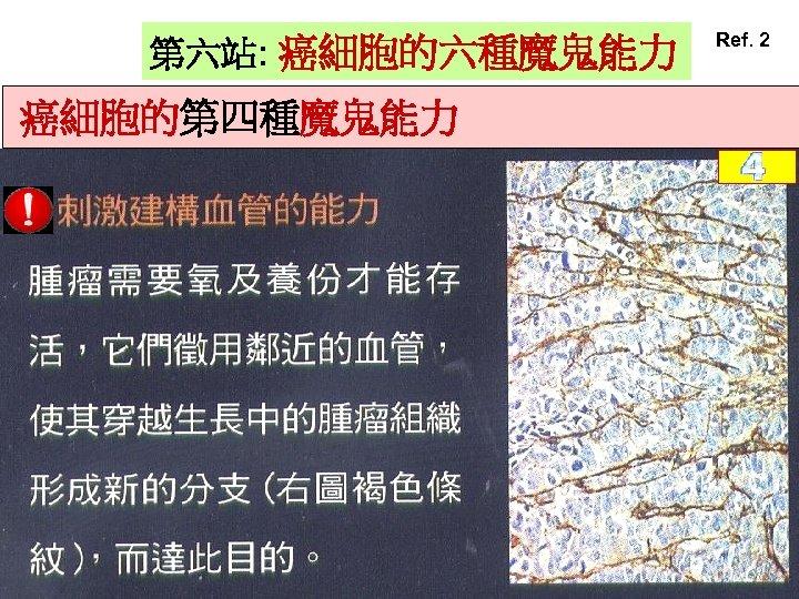 第六站: 癌細胞的六種魔鬼能力 癌細胞的第四種魔鬼能力 Ref. 2