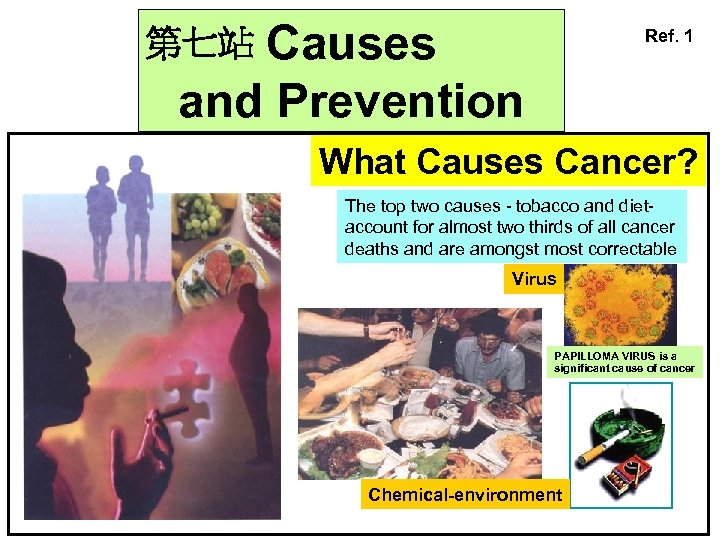 Causes and Prevention Ref. 1 第七站 What Causes Cancer? The top two causes -