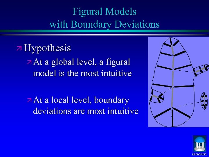 Figural Models with Boundary Deviations ä Hypothesis ä At a global level, a figural