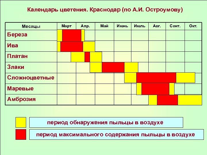 Календарь цветения. Краснодар (по А. И. Остроумову) Март Месяцы Апр. Май Июнь Июль