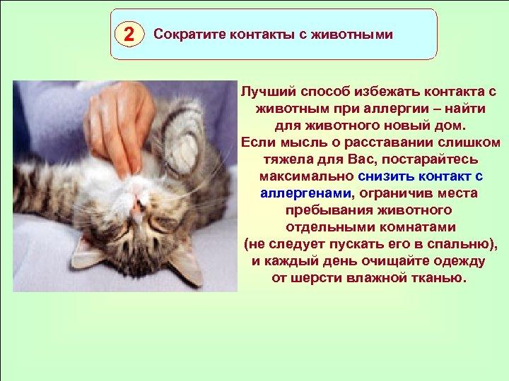 2 Сократите контакты с животными Лучший способ избежать контакта с животным при аллергии –