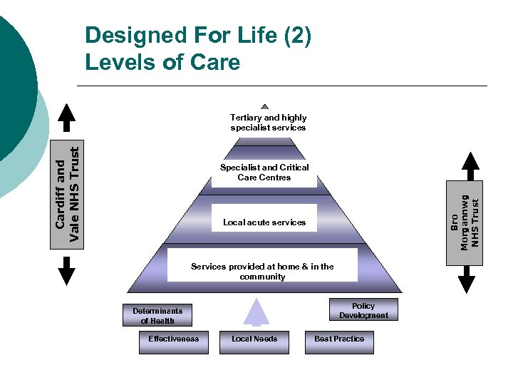 Designed For Life (2) Levels of Care Cardiff and Vale NHS Trust Tertiary and