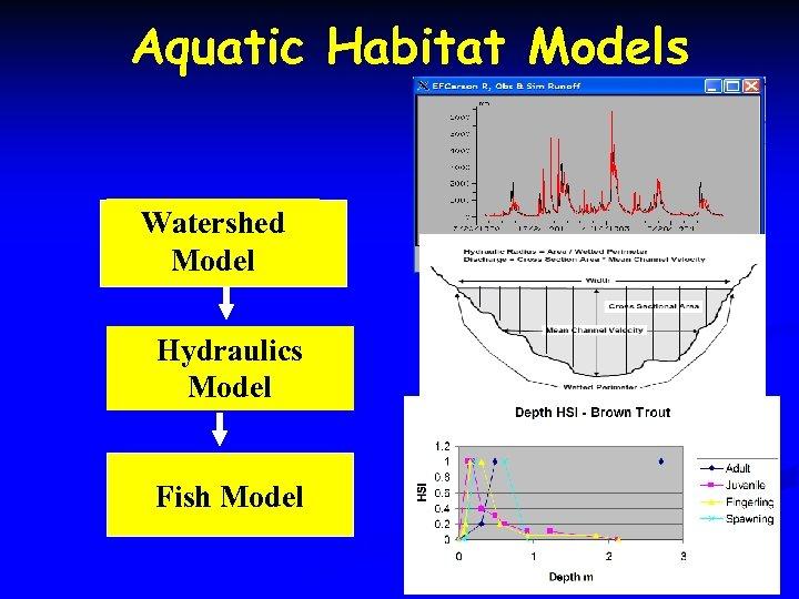 Aquatic Habitat Models Watershed Model Hydraulics Model Fish Model
