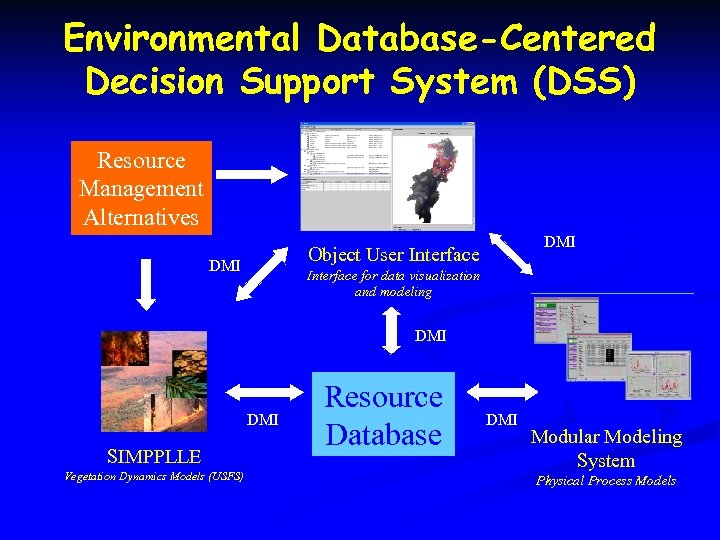 Environmental Database-Centered Decision Support System (DSS) Resource Management Alternatives DMI Object User Interface DMI