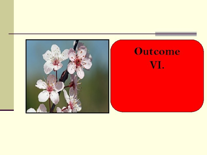Outcome VI.