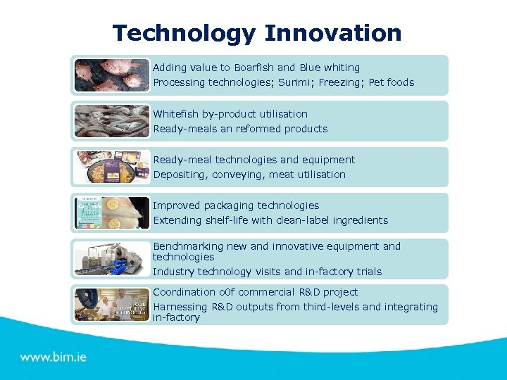 Technology Innovation Adding value to Boarfish and Blue whiting Processing technologies; Surimi; Freezing; Pet