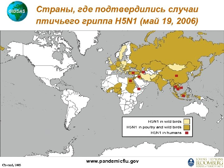 GIDSAS Chotani, 2005 Страны, где подтвердились случаи птичьего гриппа H 5 N 1 (май