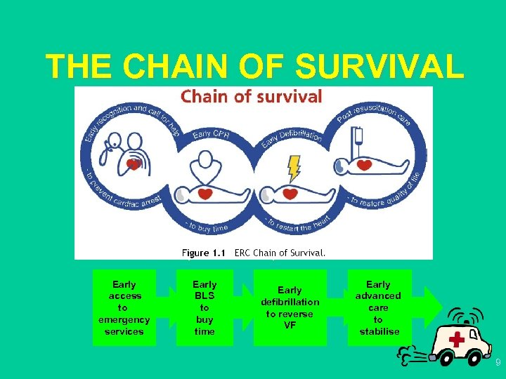 THE CHAIN OF SURVIVAL up to 4 min Early access to emergency services up