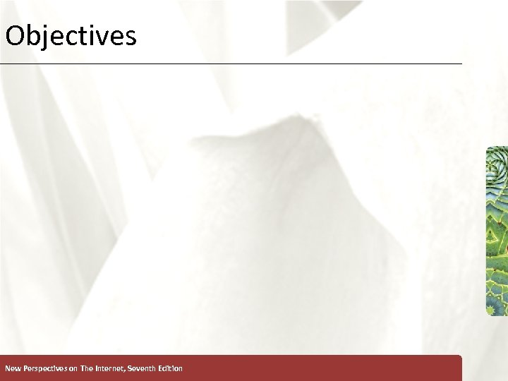 Objectives New Perspectives on The Internet, Seventh Edition XP