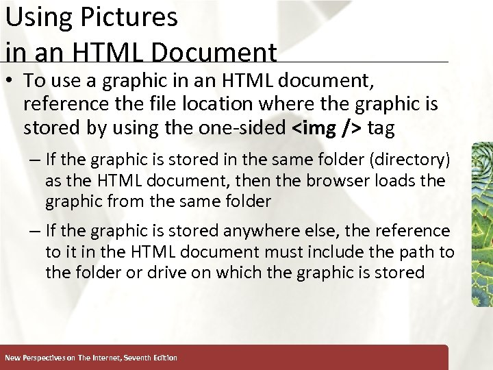 Using Pictures in an HTML Document XP • To use a graphic in an