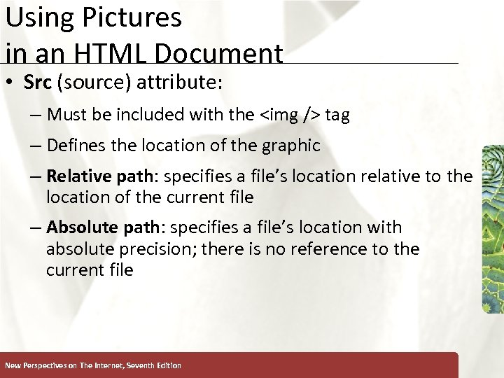 Using Pictures in an HTML Document XP • Src (source) attribute: – Must be