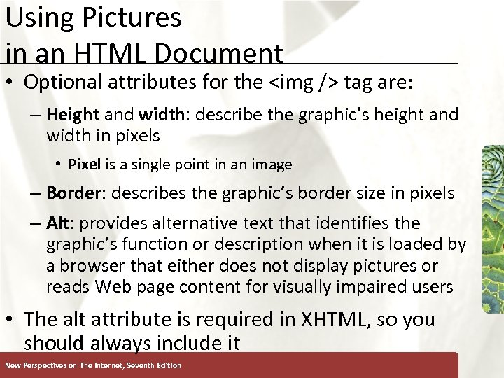 Using Pictures in an HTML Document XP • Optional attributes for the <img />
