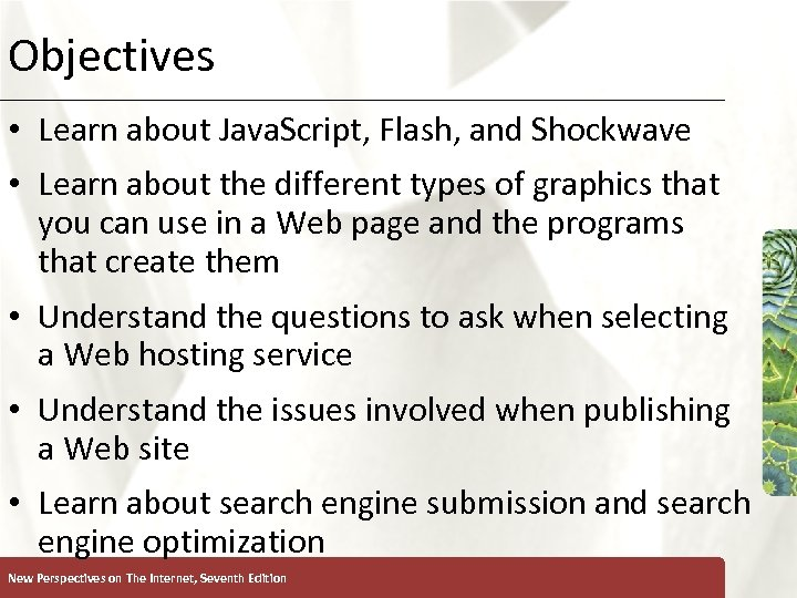 Objectives XP • Learn about Java. Script, Flash, and Shockwave • Learn about the