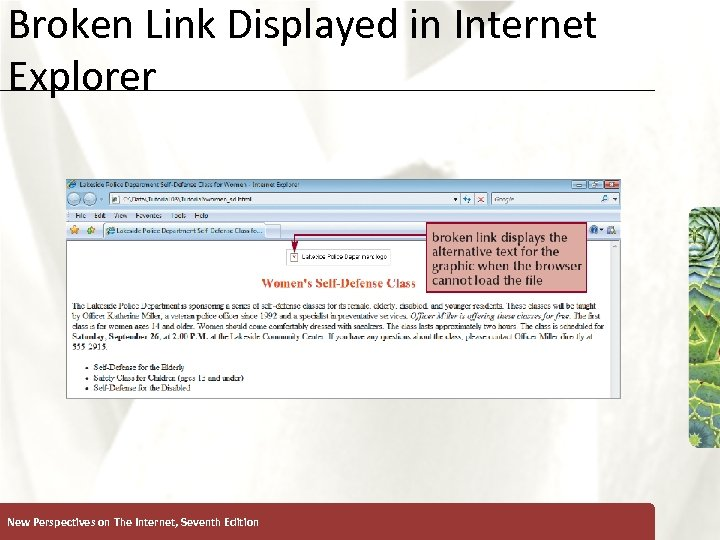 Broken Link Displayed in Internet Explorer New Perspectives on The Internet, Seventh Edition XP