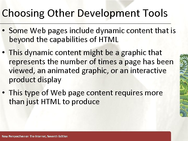 Choosing Other Development Tools XP • Some Web pages include dynamic content that is