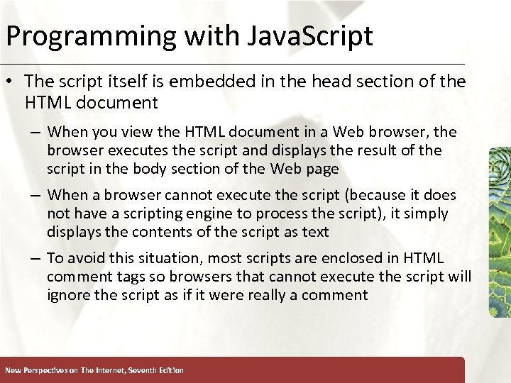 Programming with Java. Script XP • The script itself is embedded in the head