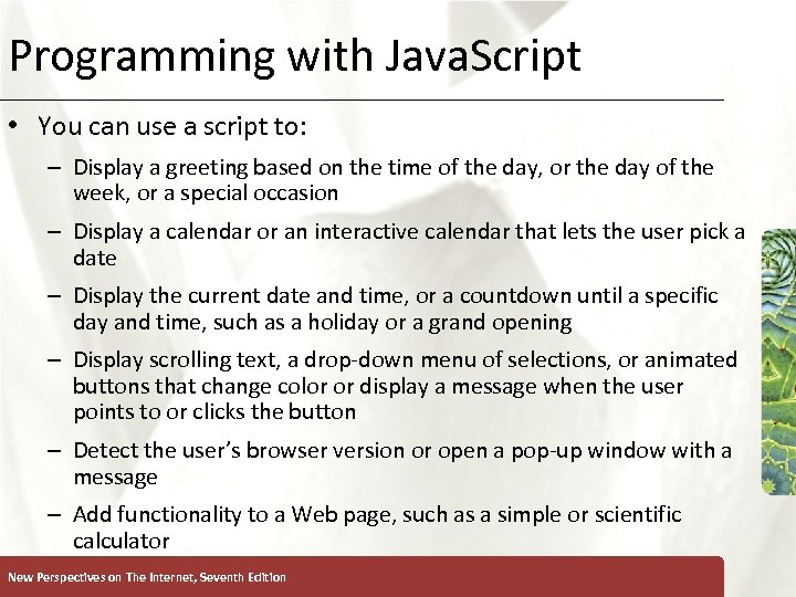 Programming with Java. Script XP • You can use a script to: – Display